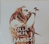 Bild Album <a href='/de/sound/tontraeger/129-bambus' title='Weiterlesen...' class='joodb_titletink'>Bambus</a> - Collie Herb