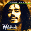 Bild Album <a href='/de/sound/tontraeger/119-waillin-for-love' title='Weiterlesen...' class='joodb_titletink'>Waillin For Love</a> - Junior Marvin (Ex Bob Marley)